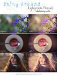 LR preset: Shiny Dreams - Blueberry Cake