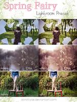 LR preset: Spring Fairy by DorottyaS