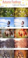 LR Preset Pack: Autumn Feelings