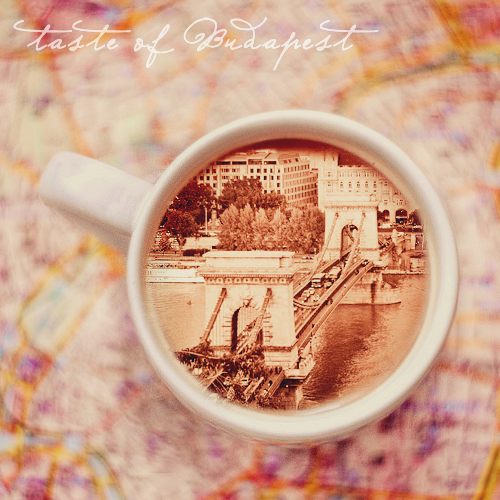 Taste of Budapest by DorottyaS