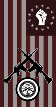 American Resistance Movement Flag1