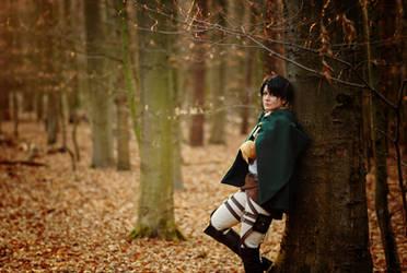 Shingeki no Kyojin - Levi by kayleighloire