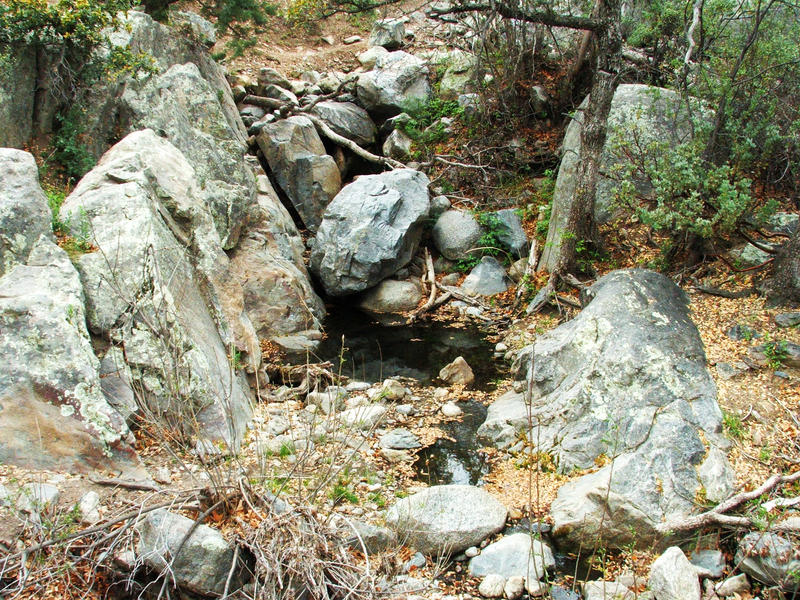 Pioneer Creek by dozalt