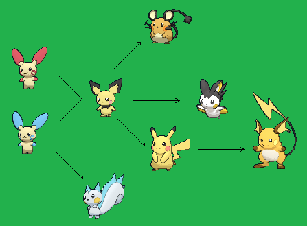 pachirisu evolution chain - photo #16