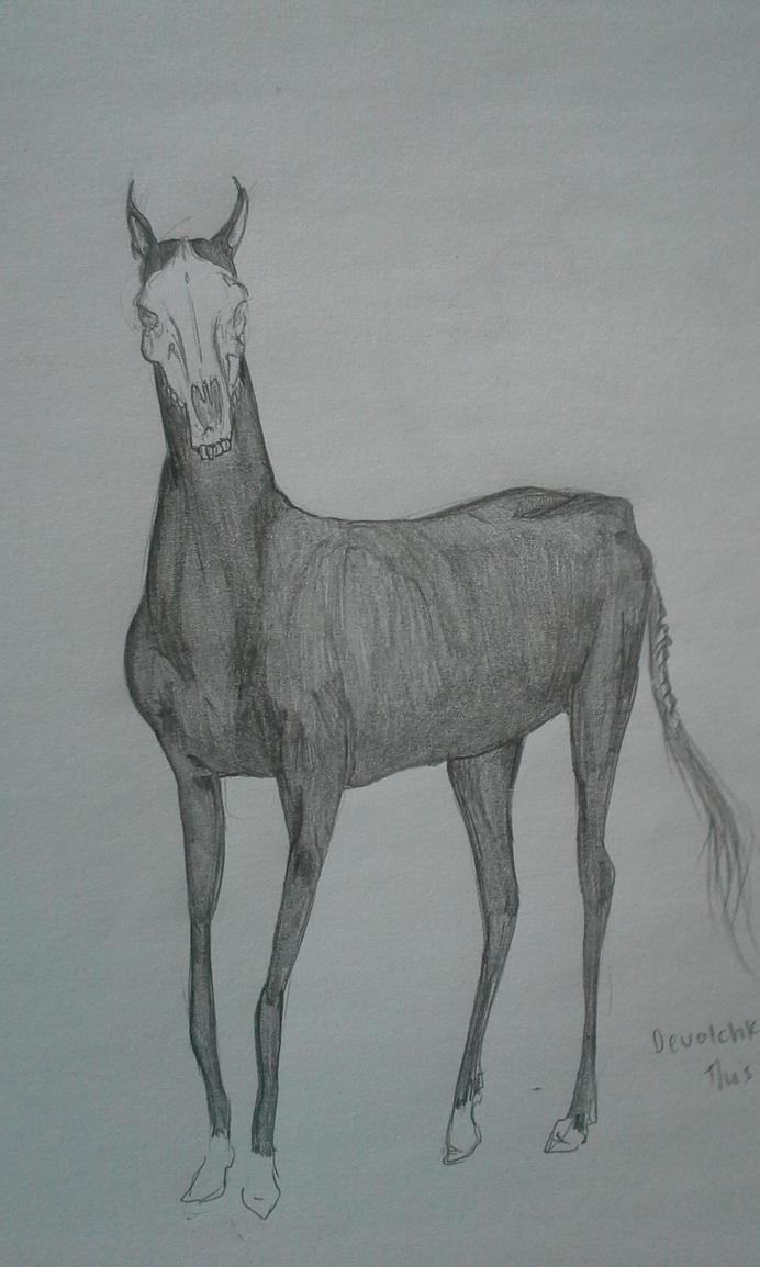 Horse by Kantata98