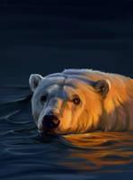 Bear 140 min by SalamanDra-S