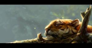 Tiger sleeps
