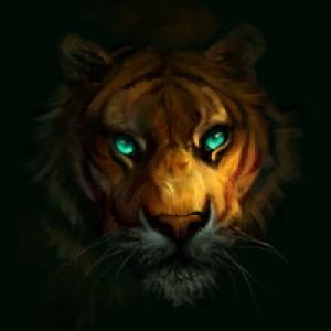 SalamanDra-S's Profile Picture