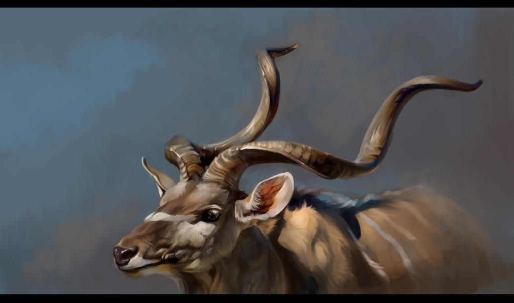 Antelope by SalamanDra-S