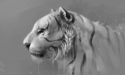 tiger by SalamanDra-S