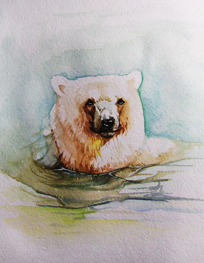 Bear by SalamanDra-S
