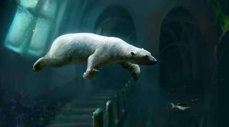 2018 Polar Bear by SalamanDra-S