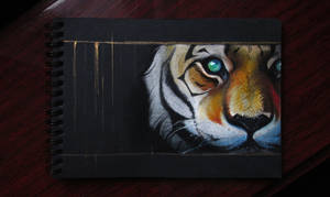 Tiger 2018 6