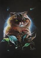 Cat by SalamanDra-S
