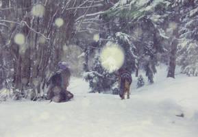 lost in the tale woods by yiimisekiz
