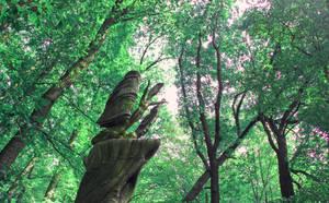 spirits of forest by yiimisekiz