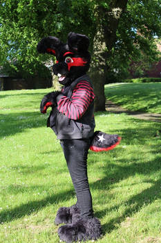 Dale Rabbit - Partial personal suit