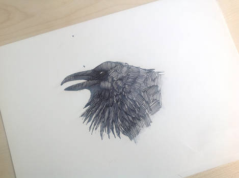 another raven