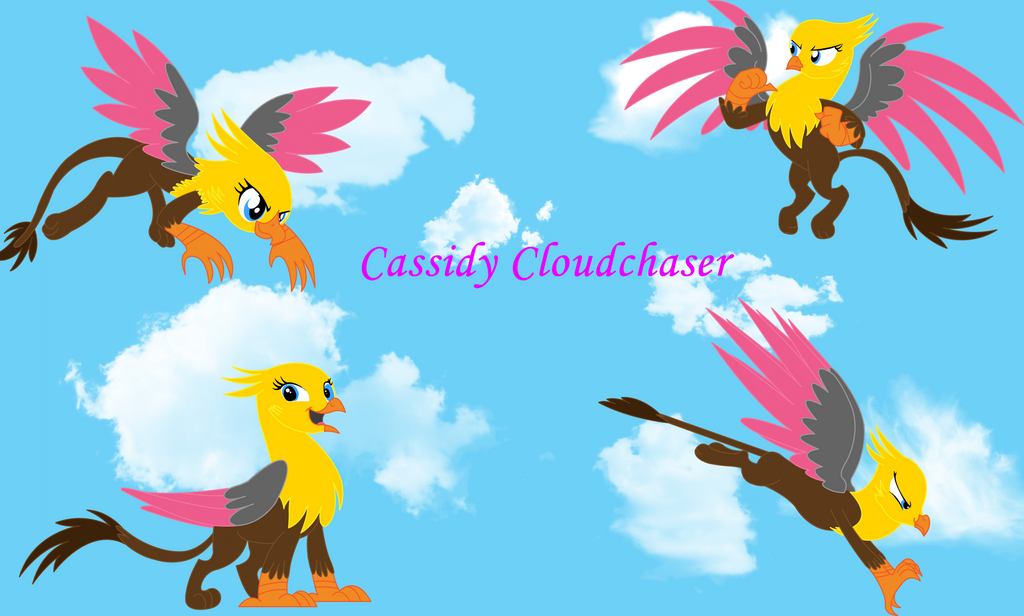 Cassidy Cloudchaser (MLP) by thegriffin88