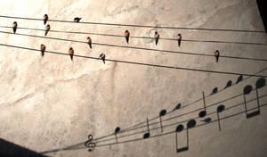 Music is everywhere by Darthko