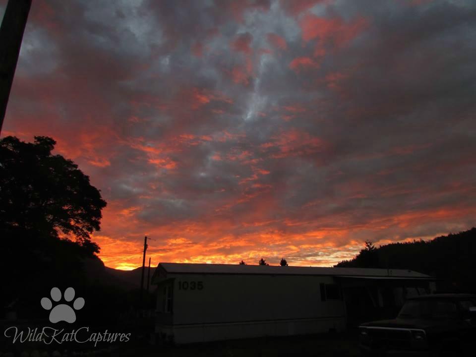 7am Sunrise by WildKatCaptures