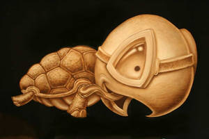 flying turtle by JasonJacenko
