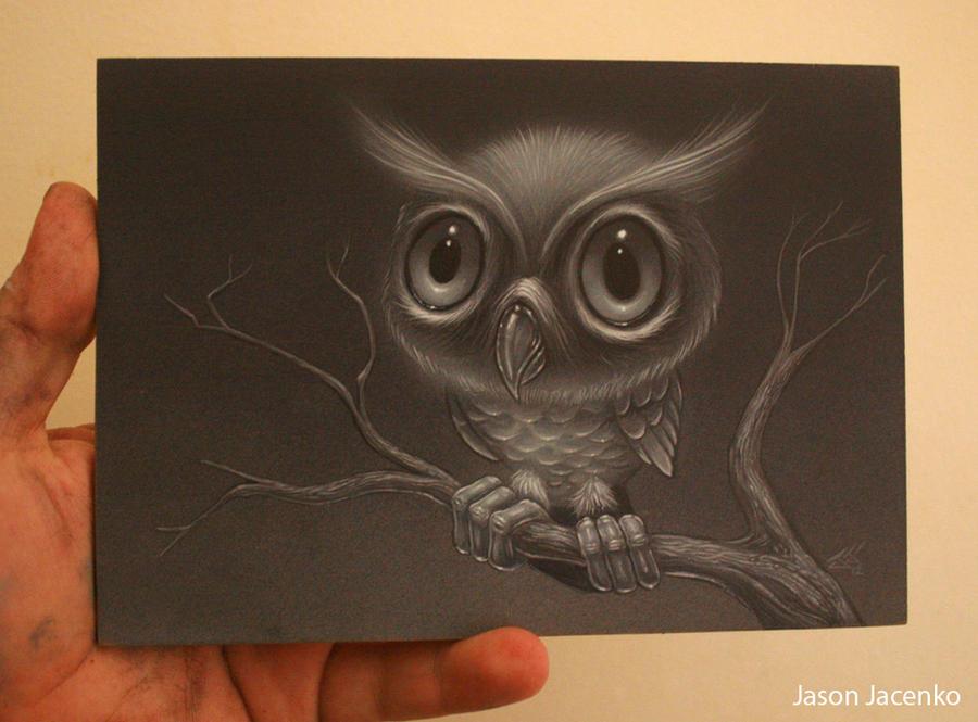owl by JasonJacenko