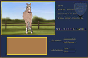 GHS CHESTER CASTLE - SOLD