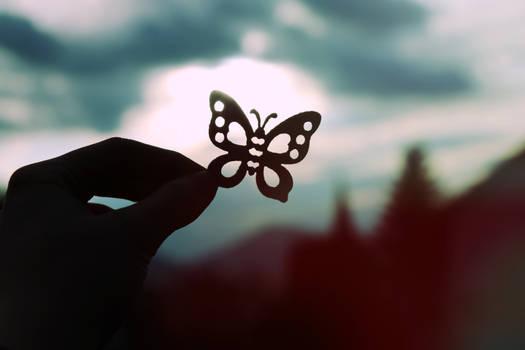 Butterflies and hurricanes
