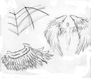 Feather Wings Anime style