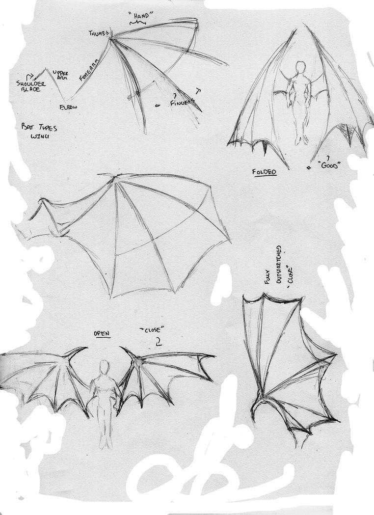 Bat Anime Wings by StickWilde