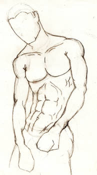 Male anatomy study2