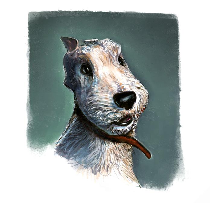 doggy dog by machine8