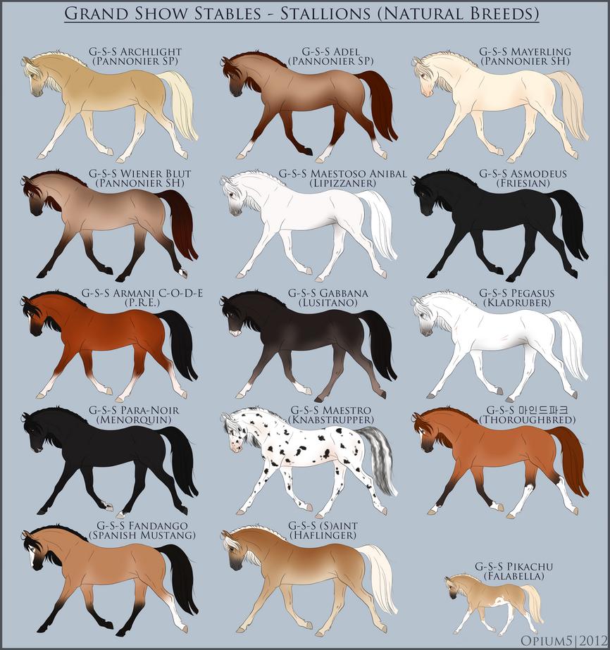 G-S-S Stallions (Natural