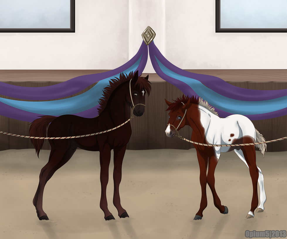 [Foal Halter] Designer and Hades by Opium5
