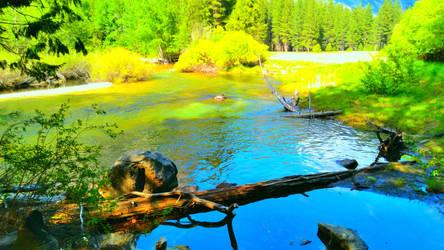Waterlife and Treelife