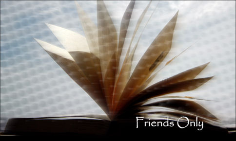 Friends Only Journal by angelicmadman