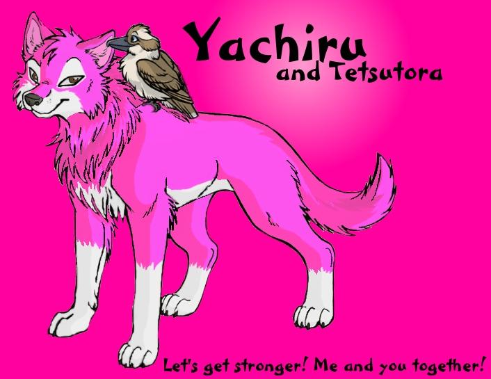 yachiru_by_isarahkate-d4lhg8t.jpg