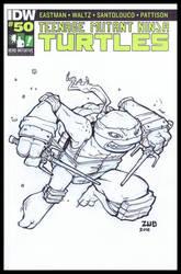 TMNT 100 Hero Initiative Sketch Cover