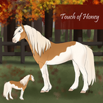 Touch of Honey
