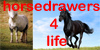 A Horsedrawers4life contest by Power4Petlove