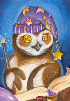 Wizard Owl by VisionCrafter