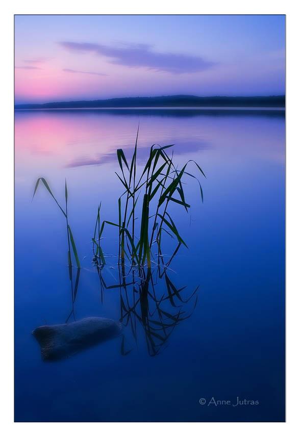 Bleu Nuit by Mystik-Rider