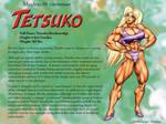 Tetsuko's Maidens 08 profile