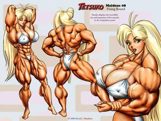 Tetsuko's Maidens 08 - Poses by DavidCMatthews