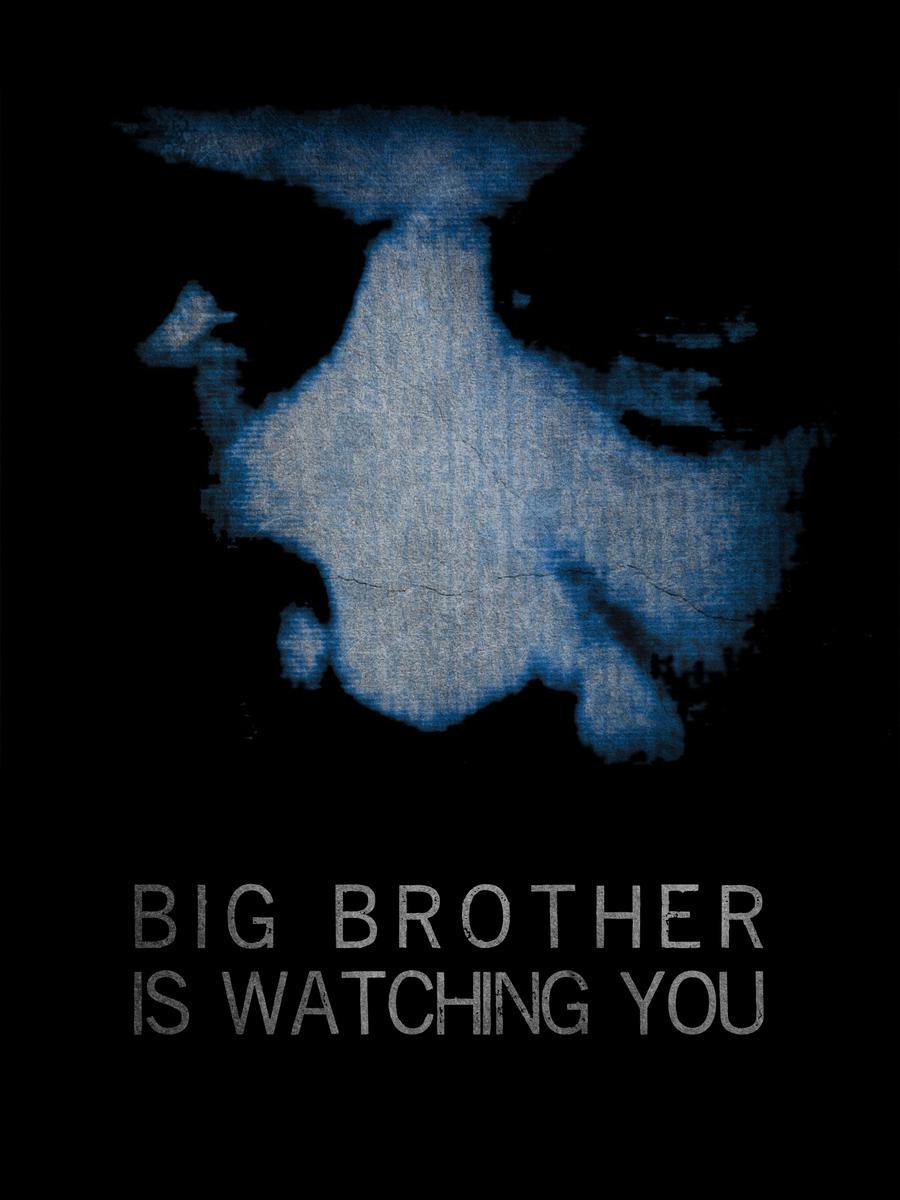 Big Brother Is Watching You by maxhigbee on DeviantArt