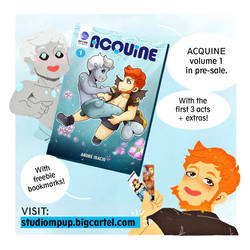 Acquine Vol.1 - PRE SALE by Desinho