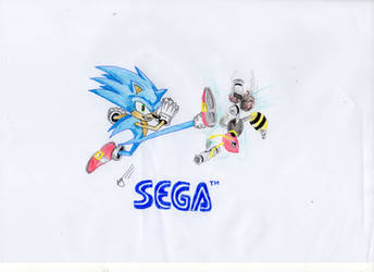 Sonic kicking Buzzer by DJR3B3L
