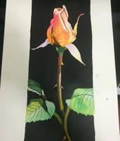 My rose - watercolor
