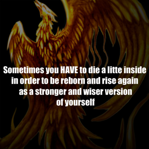 Phoenix quote by yugan rain26 on deviantart phoenix quote by yugan rain26 voltagebd Images